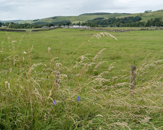 Looking towards Moniaive from the river walk. Nithsdale, South West Scotland.