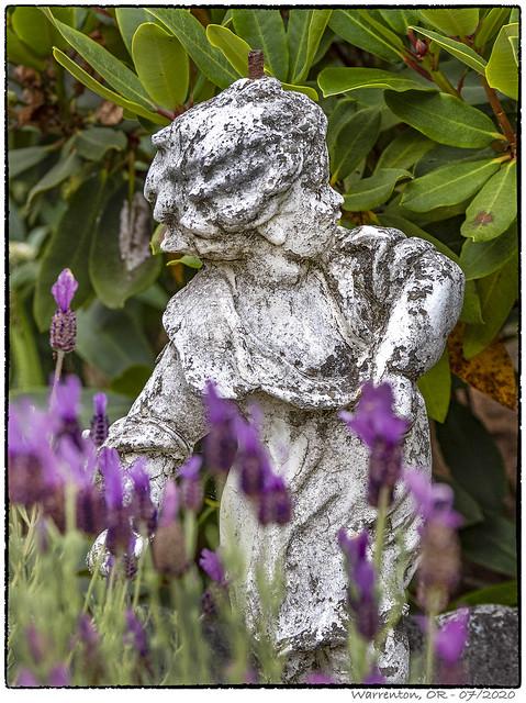 Garden Lady