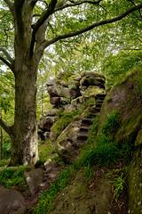 Rowter Rocks