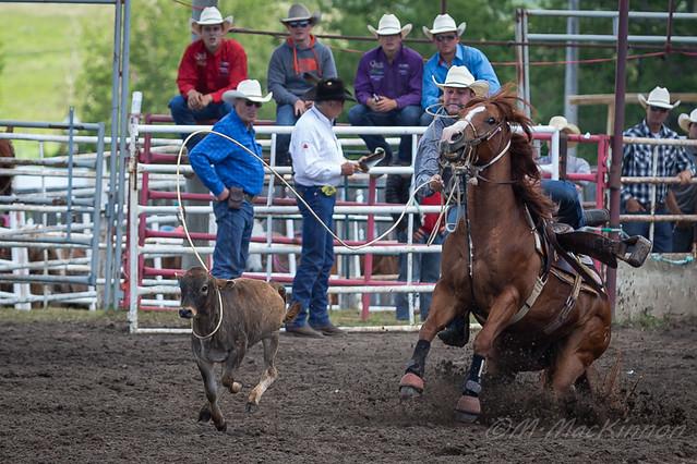 Innisfail Pro Rodeo 2019