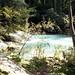 Parco fluviale dell' Alta val D' Elsa