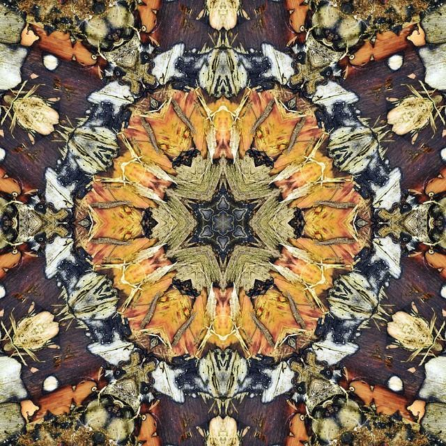 Kaleido Abstract 2483