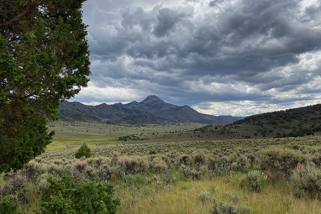 Little Creek Peak and Upper Bear Valley from Old Spanish Trail