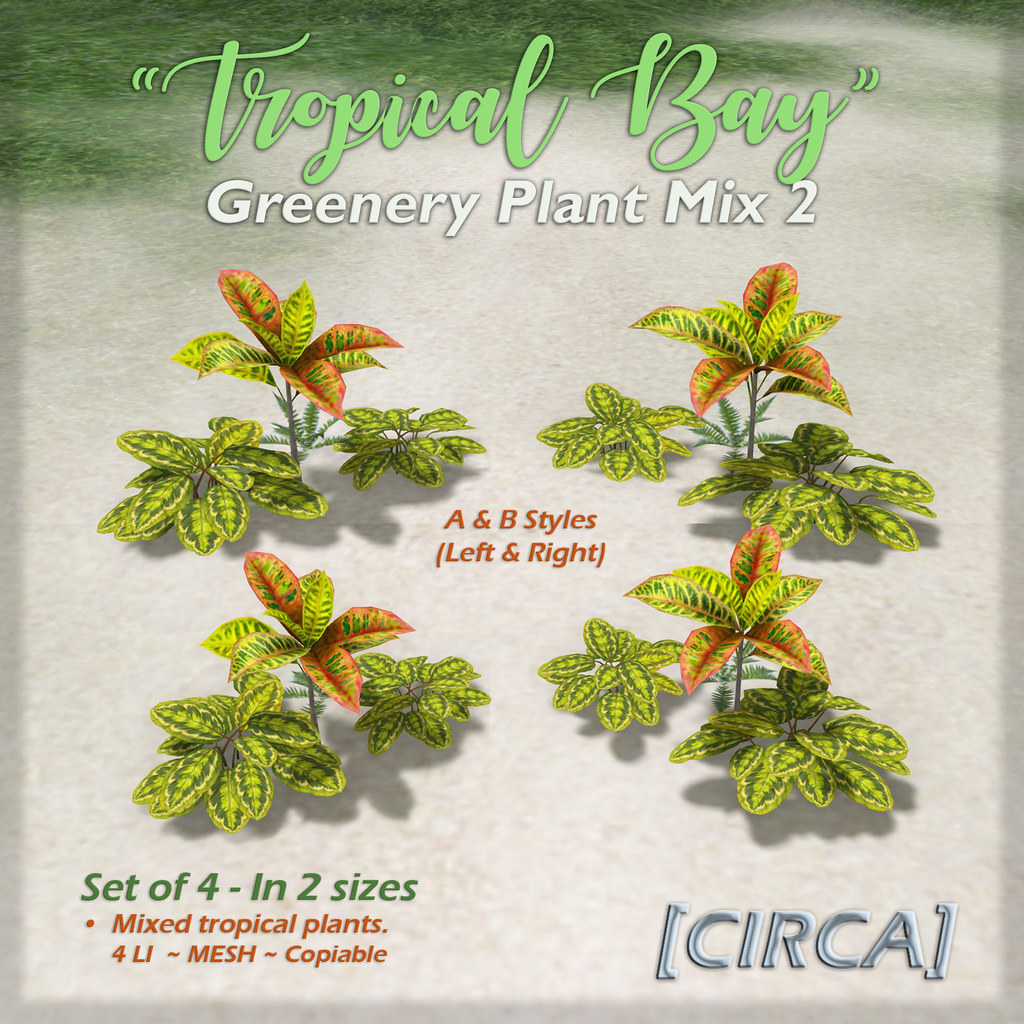 "SSS Event Item | [CIRCA] – ""Tropical Bay"" – Greenery Plant Mix Set 2"