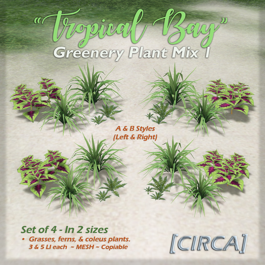 "SSS Event Item | [CIRCA] – ""Tropical Bay"" – Greenery Plant Mix Set 1"
