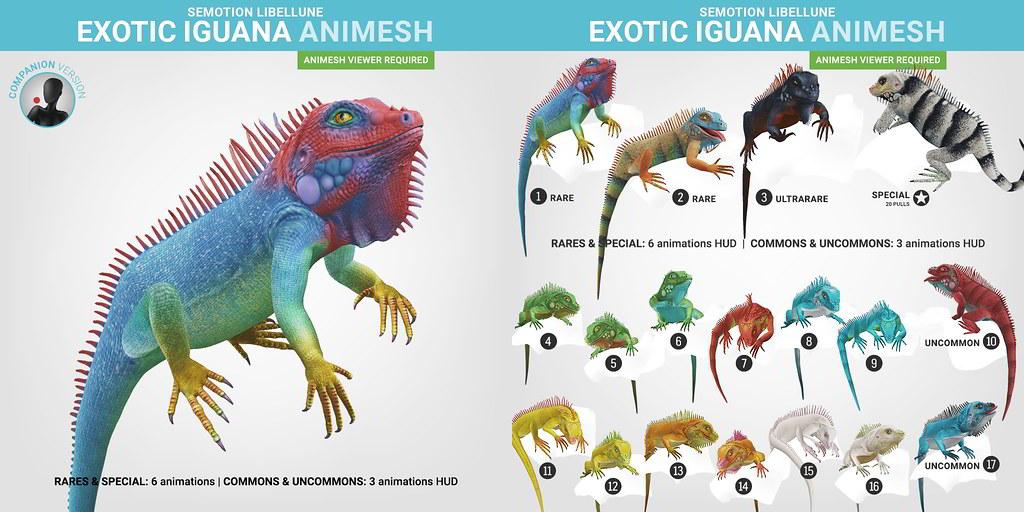 SEmotion Libellune Exotic Iguana Animesh