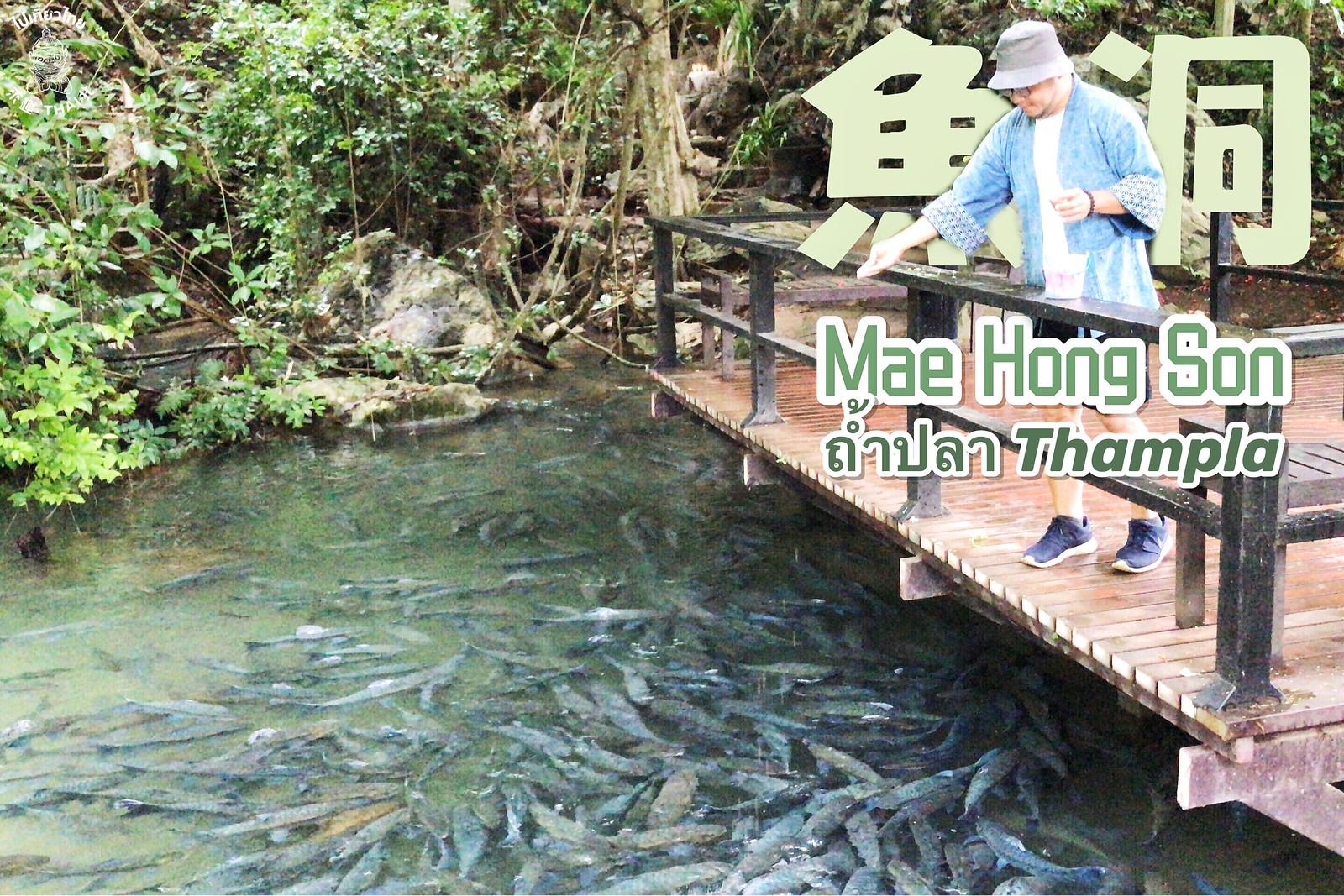 PhaSua國家公園《ถ้ำปลา。Thampla。魚洞》