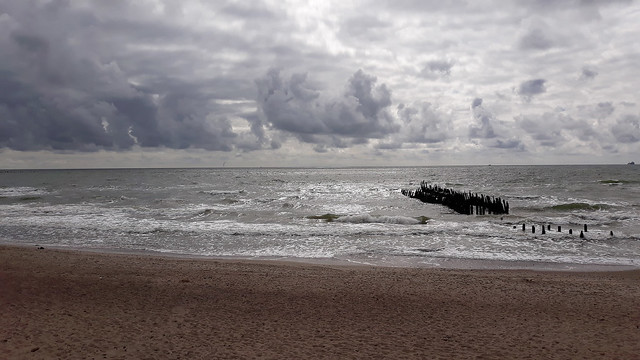 By the Baltic Sea 08