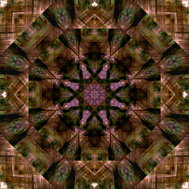 Peeking through a kaleidoscope series