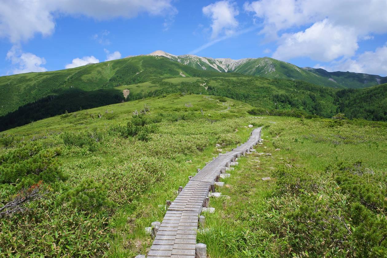 太郎平小屋から薬師岳へ