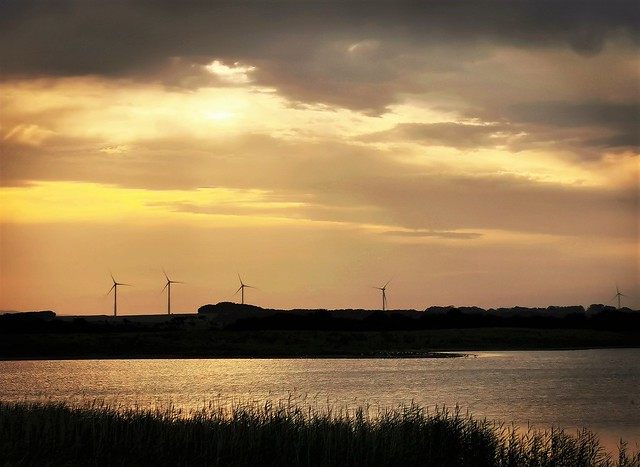 Dusk Descending Over Cresswell Pond and Wind Turbines