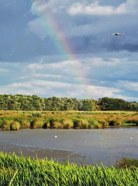 Rainbow End at Druridge Ponds
