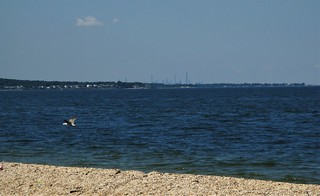 Manhattan From Caumsett State Park (Suffolk County, Long Island, NY) | by DTolman