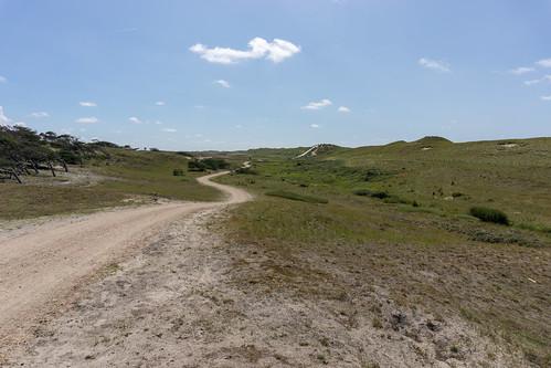 Scenic gravel road
