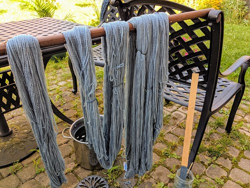 Wet freshly dyed indigo handspun Polwarth skeins suspended on wood rod over chair with dye pot and mixing stick