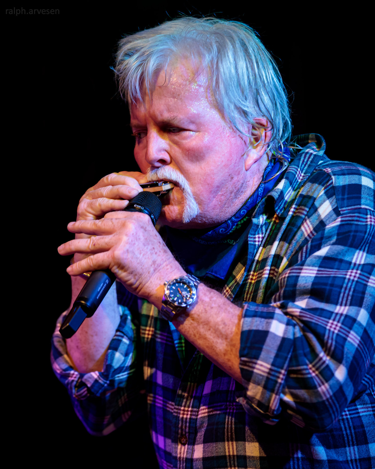 Texas Clearwater Revival | Texas Review | Ralph Arvesen