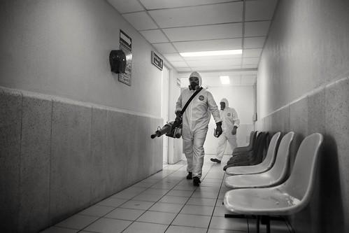 Retrato de una pandemia
