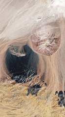 Mina Escondida | A Forma da Terra