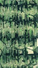 Porto Velho | A Forma da Terra