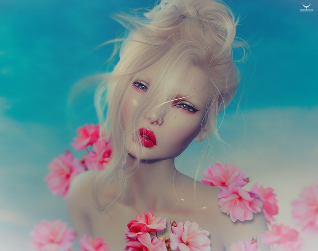 Shena~Bloom -crop