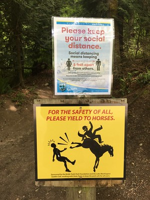 Bridle Trails Yield to Horses