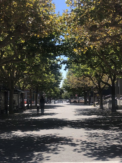 Campus Allée