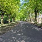 Shady walkway in Penwortham