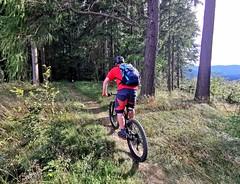 Lesní trail na československé hřebenovce