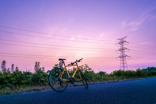nex5r sunrise 手賀沼サイクリングロード