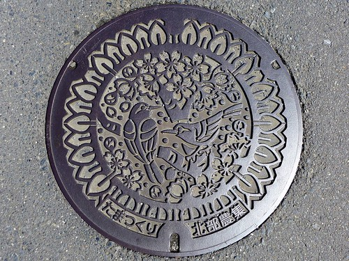 Tamatsukuri Ibaraki, manhole cover (茨城県玉造町のマンホール)