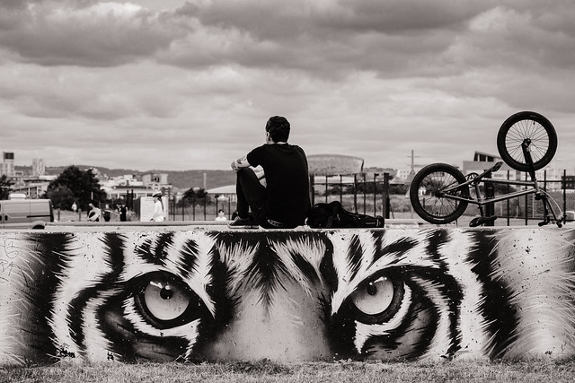 Riding the Tiger. Cardiff Bay.