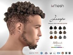 Jacopo Hair & Goatee
