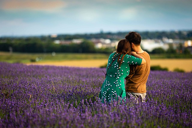 Romance in the Lavender Fields