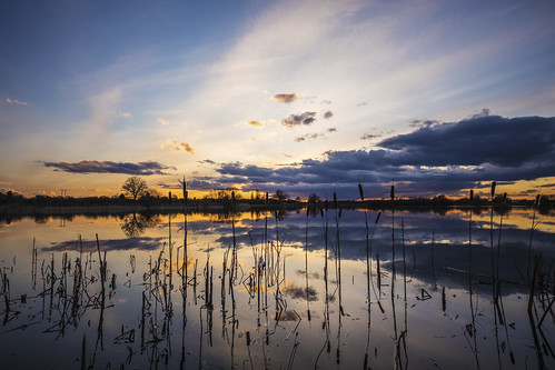 canon6d sunset lake water reflection landscape nature outside outdoors uk cambridgeshire