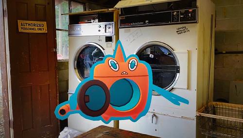 479 Rotom Wash