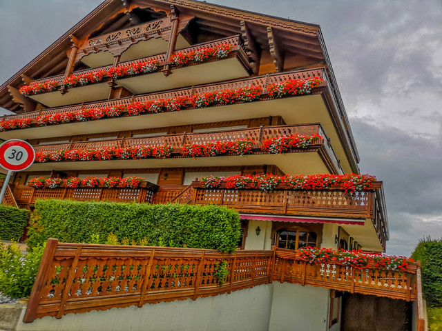 Chalet full of hanging petunia flowers.