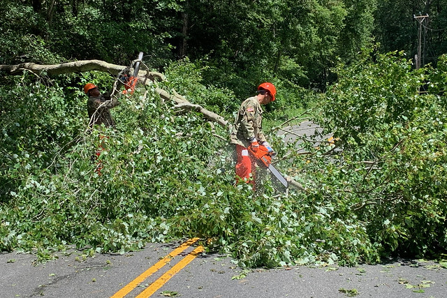 VNG Soldiers help clear fallen trees in White Stone
