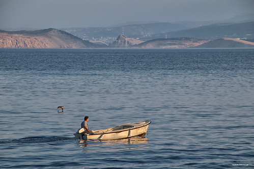 blue sea adriatic shore seascape water bird coast landscape croatia hrvatska europe canon