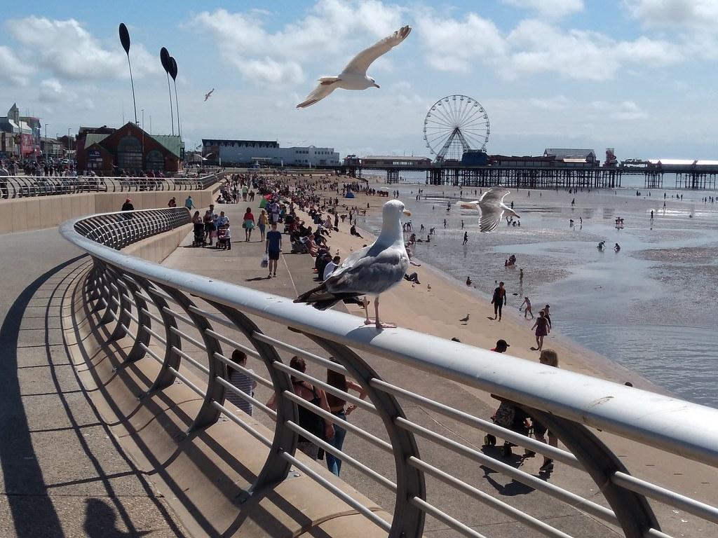 Blackpool 009