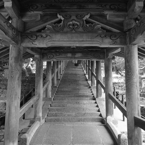 05-08-2020 Hasedera Area, Nara pref (17)