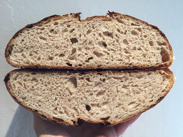 Scalded Masa Loaf