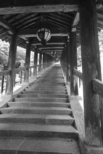 05-08-2020 Hasedera Area, Nara pref (21)