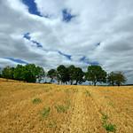 1. August 2020 - 14:16 - Mont de Bourguillemont de Therdonne - Oise