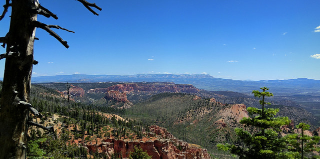 Rainbow Point - Bryce Canyon National Park, Utah - Panorama