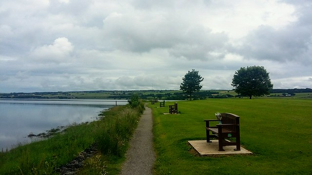 Ferry Picnic Area, Dingwall, July 2020
