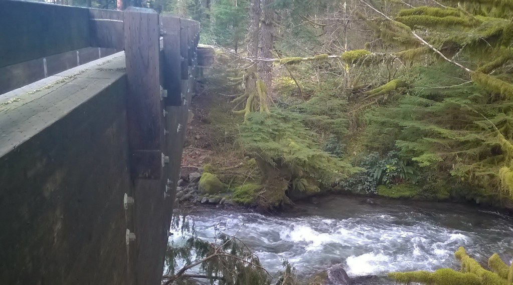 Zigzag River on the Pioneer Bridle Trail, Mount Hood National Forest  04/03/2016