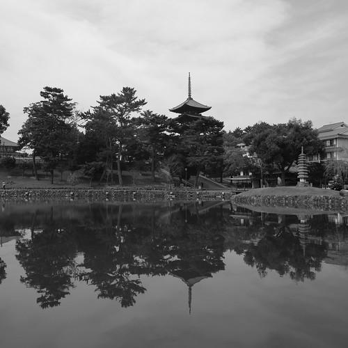 05-08-2020 Nara vol02 (11)