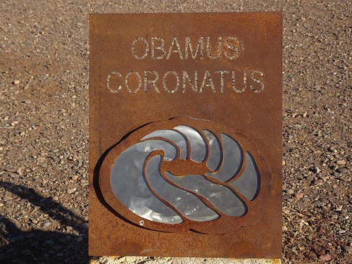 Parachilna in the Flinders Ranges. Sculpture of one of the Ediacaran world famous fossils of the first multicelled life one earth. Obamus coronatus.