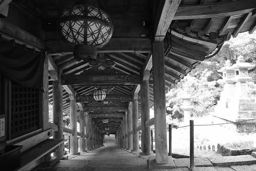 05-08-2020 Hasedera Area, Nara pref (20)
