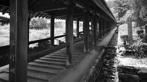 05-08-2020 Hasedera Area, Nara pref (12)